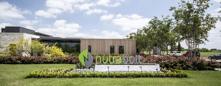 verdant-landscape architecture-design-build-nutrabolt-college station-texas